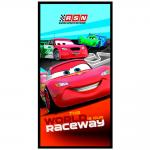 Cars Telo Mare Raceway Disney