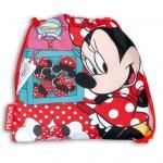 Minnie Sacco Disney Cake